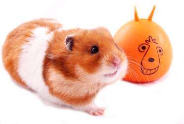 Space hopper hamster by sandalwood92