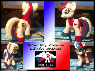 Custom Blindbag for CZ/SK Brony community by TheGolden-Dragon
