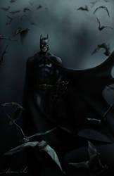 batman by sherrill018