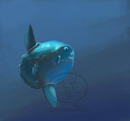 Mola mola by comixqueen