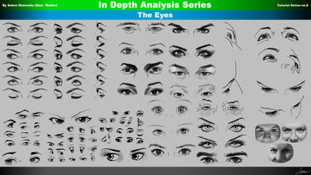 Everything You Need to Know to Draw the Eyes by rainwalker007