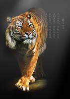 Martial Arts by vimark
