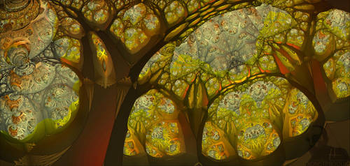 13th Secret Of Cathedral Woods by MANDELWERK