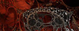 Amoebae Solaris Spine by MANDELWERK