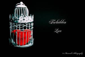 Forbidden Love by lichtschrijver