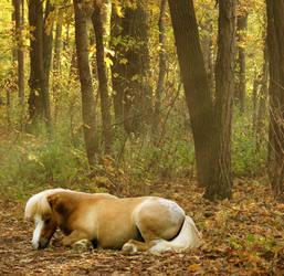 Autumn's Kiss by CauldronCake