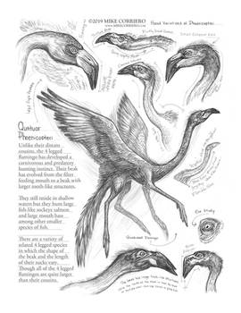 Creature Sketch Page 4 legged Flamingo by MIKECORRIERO