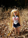 BCG: Princess Sailor Moon (Custom doll clothes) by Leaf-nin