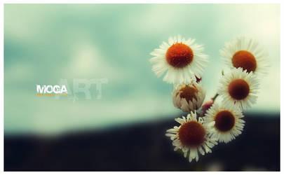 some flowers by maya-love-u