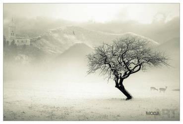 Fairy-land by maya-love-u