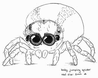 Baby spider by BattleRager