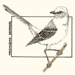 SKD - Arkansas - Mockingbird by BattleRager