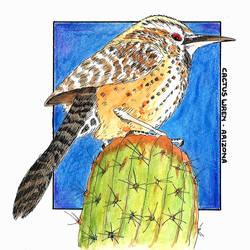 SKD - Arizona - Cactus Wren by BattleRager