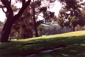 007 Forest Lawn - Los Angeles by J2theStock