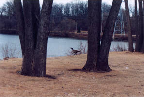 012 Fox River - Appleton WI by J2theStock