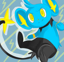 PKMN - Shinx by autumnflier