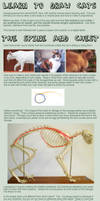 Cat Tutorial: Bodies by Uncognoscente