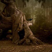 Haunted by NicolasEvariste
