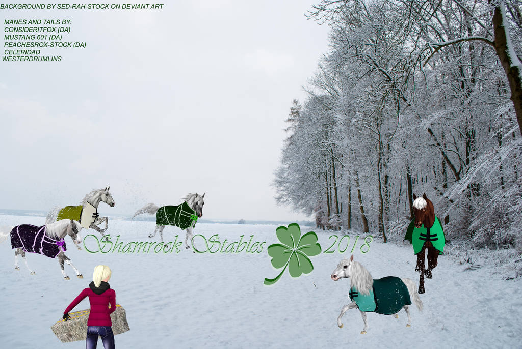Mares In Snow 1 by KendraLongson