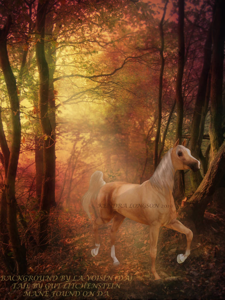 Trinket in the autumn forest by KendraLongson