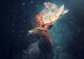 The Deer by Kryseis-Art