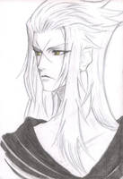 Saix The Luna Diviner by Fallenangelj