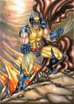 Wolverine by ChrisPapantoniou
