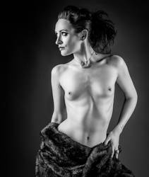 Fur Coat and No Knickers by Deirdre-J