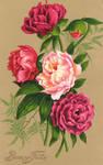 Victorian Floral 2 by Bnspyrd