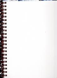 Pre-Cut Blank Spiral Notebook Page by Bnspyrd