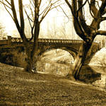 serpentine bridge by ali-reme