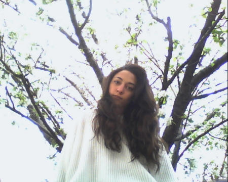 Iararawr's Profile Picture