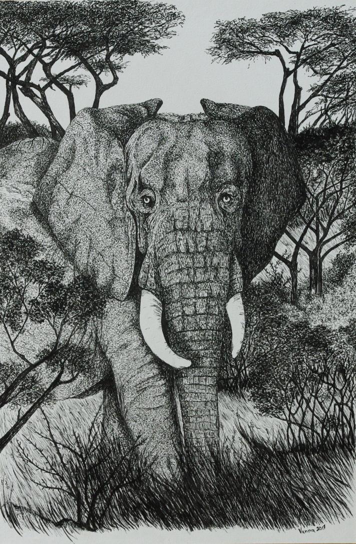 Elephant Zooly Challenge 15 by GersifGalsana