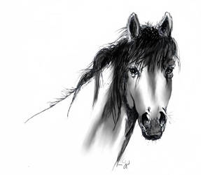 Horse - inktober by GersifGalsana