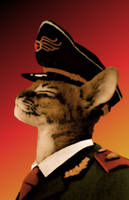 Domestic Dictators: Generalissimo Whiskers by Bongwater-bandit