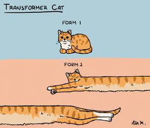 688-Transformer Cat by Alia-Moosvi