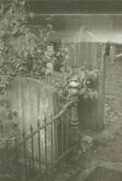 Cemetery Hoogeveen by Jantinus