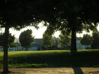 Darker Trees at the Park by osirius-raeyna-katja