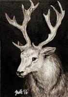 Inktober #1 | Deer | ACEO by silverybeast