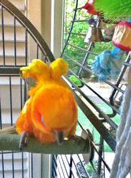 Mrs. Pickles, the bird by animeactress13