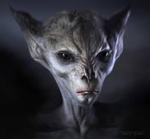 Alien Head by TARGETE