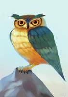 Owl by zgul-osr1113