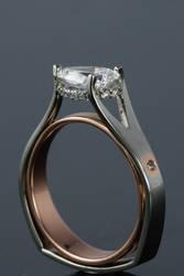 My ring by KestrelShatterwind