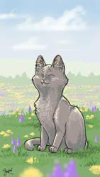 Cat challenge by KestrelShatterwind