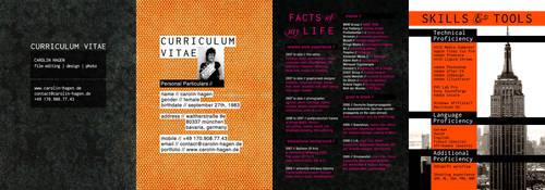 Curriculum Vitae by LaCaroratcha