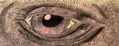 Lizard Eye by CassieCros13
