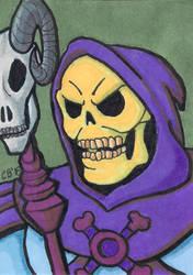 Skeletor sketch card by whipsmartbanky