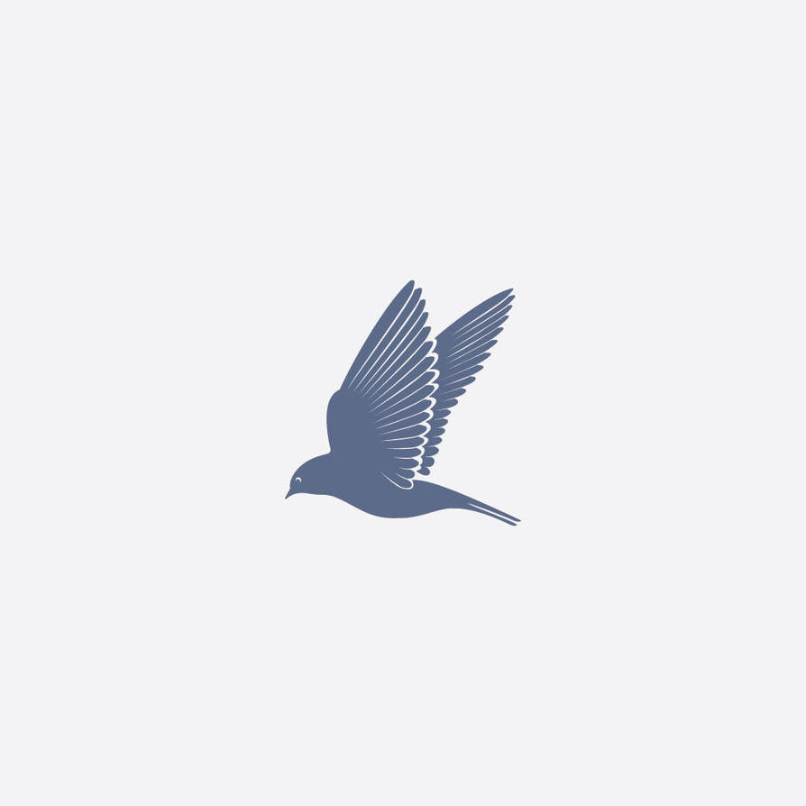 Swallow by samadarag