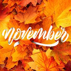 November by samadarag