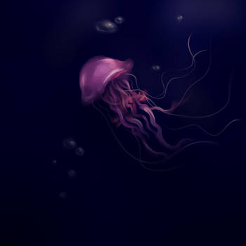 Jellyfish by Zaelum